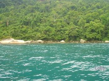 barco-mar-verde.jpg