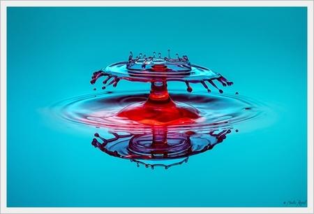 gota_art-09.jpg
